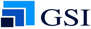 GSI 2010